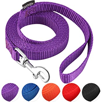 AMAGOOD 6 FT Puppy/Dog Leash, Strong and Durable Traditional Style Leash with Easy to Use Collar Hook,Dog Lead Great for Small and Medium and Large and Cat