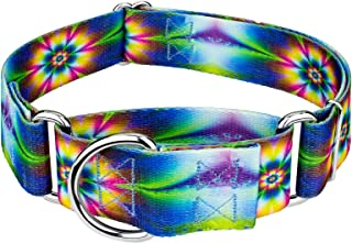Country Brook Petz - Martingale Dog Collar - Groovy Collection