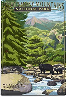 Great Smoky Mountains National Park, Tennesseee - Leconte Creek and Mt. Leconte (12x18 Aluminum Wall Sign, Wall Decor Ready to Hang)