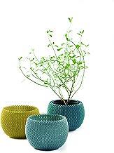 Keter Knit Cozies - Macetas de jardín para Interiores y Exteriores, Juego de 3