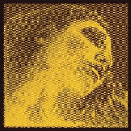 Pirastro Evah Pirazzi Gold Violin String Set - Gold Wound G - Loop E - Medium Gauge