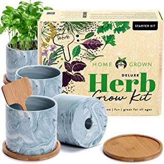 Indoor Herb Garden Starter Kit - Herb Seeds Gardening Kit Planting Pots & Potting Soil - Heirloom & Non GMO - DIY Home See...