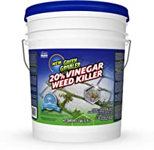 Green Gobbler 20% Horticultural Vinegar Weed Killer | Herbicide | Natural Weed Killer | Organic Weed Killer (5 Gallon Pail)