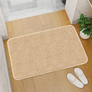 Front Door Mat Indoor Doormat, Non-Slip Absorbent Resist Dirt Entryway Rug, Welcome Doormat for Front Door, Machine Washab...