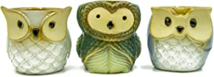 Large Owl Ceramic Succulent Planters Set of 3 | 3.5 Inch Cactus Pots with Drainage Hole Cute Gift
