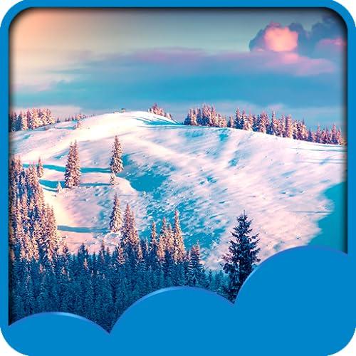Winter Live Hintergrundbilder