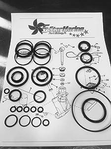 Rebuild Kit!! Johnson Evinrude OMC Trim & Tilt O-Ring & Seal Kit 434519 0434519 FSM011