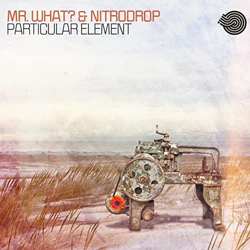 Amazon.com: Particular Element: Nitrodrop Mr.What?: MP3 ...