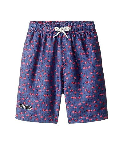 Toobydoo Classic Swim Shorts (Infant/Toddler/Little Kids/Big Kids) (Flamingo Print) Boy