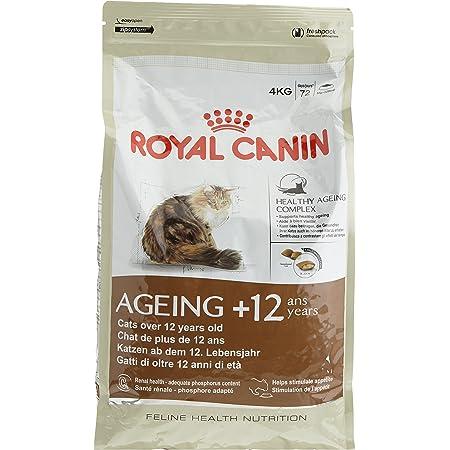 ロイヤルカナン FHN エイジング 12+ 猫用 4kg