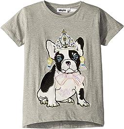 Dressy Bulldog