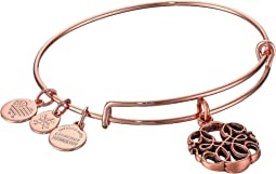 Alex and Ani - Path of Life Charm