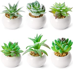 WUWEOT 6 Pack Artificial Succulent Plants, Fake Plants Small Plants in White Ceramic Potted, Mini Decorative Faux Succulents for Window Sills, Bathrooms, Office Spaces, Desk, Bookshelf and More