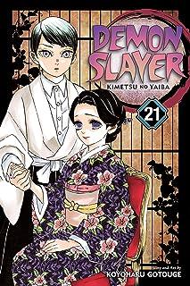 Demon Slayer: Kimetsu no Yaiba, Vol. 21: Volume 21