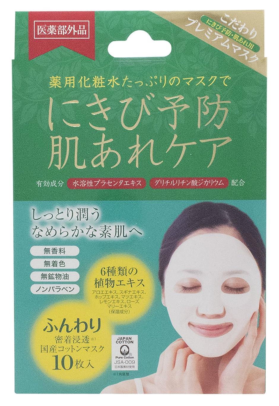 第四染色牧草地アクネピュアスキンフェイスマスク 10枚 (医薬部外品)