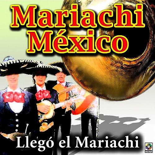 Llego El Mariachi