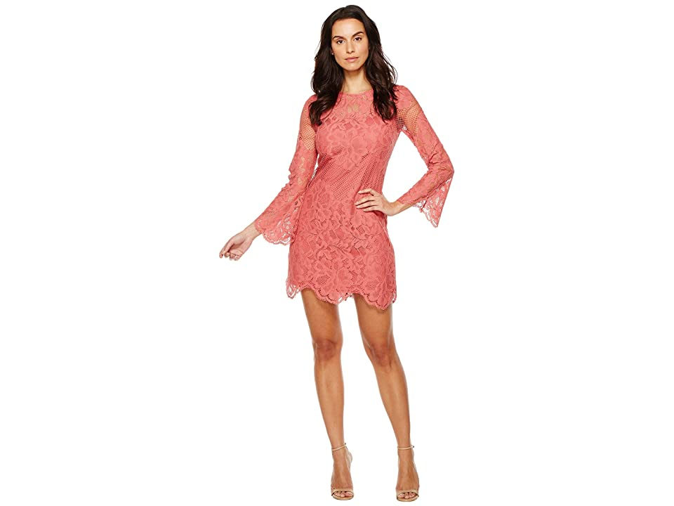 Donna Morgan A-Line Lace Dress (Clay Red) Women