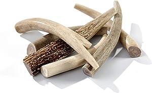 Buck Bone Organics Deer Antler Dog Bones, Premium Grade A - Natural Dog Treat, Made in Montana (Medium 6 Pack)