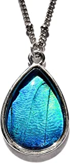 Real Blue Morpho Butterfly necklace silver In glass terrarium necklace Real butterfly wing jewelry Morpho Peleides teardrop