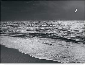 Trademark Fine Art Moonrise Beach Black and White by Sue Schlabach, 18x24-Inch
