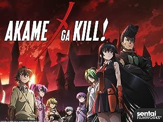Akame ga Kill! Season 1 (English Dubbed)