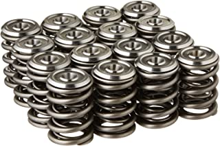 Skunk2 344-05-1300 Alpha Valve Spring and Titanium Retainer Kit for Honda B-Series Engines
