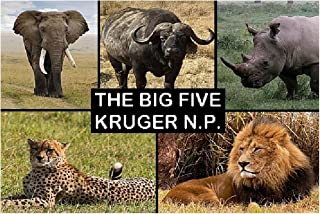 SOUVENIR FRIDGE MAGNET - THE BIG 5 in KRUGER NATIONAL PARK SOUTH AFRICA 3½ x 2½ inches Jumbo