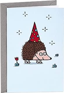 Hallmark Shoebox Funny Birthday Card (Hedgehog)