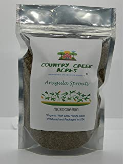 Arugula Seed, Arugula Sprouting Seeds, Microgreen, Sprouting, 16 OZ, Organic Seed, NON GMO - Country Creek Acres Brand - High Sprout Germination- Juicing, Gardening, Hydroponics, Growing Salad Sprouts