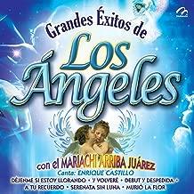 Grandes Éxitos - Los Ángeles Negros