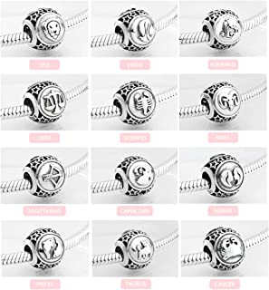 EVESCITY 925 Silver Zodiac Signs Astrology Horoscope Sterling Charm Bead for Charms Bracelets ♥ Best Jewelry Gifts for Her Birthday ♥