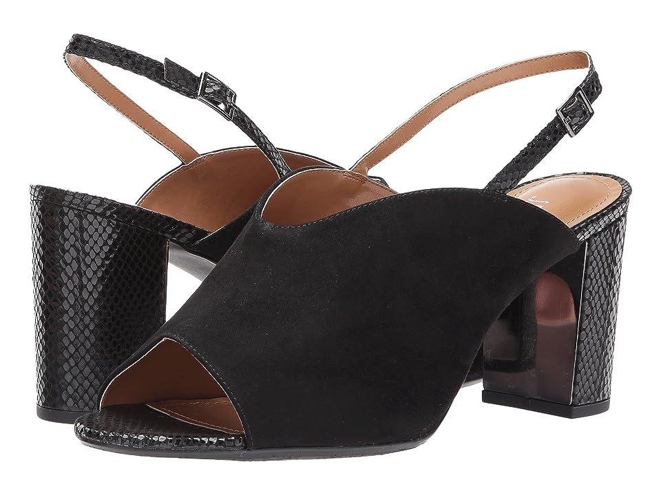 J. Renee Maarya (Black/Black) High Heels