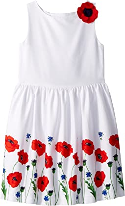 Poppy Border Print Dress (Toddler/Little Kids/Big Kids)