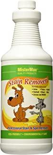 Mister Max Stain Remover