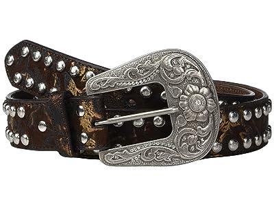 M&F Western Nocona Studded Edge Belt (Distressed Brown) Women