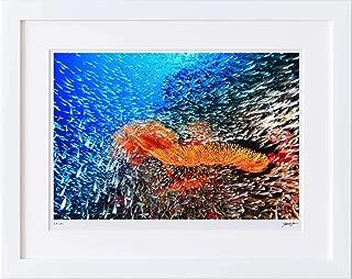 【写真工房アートフォト 額装写真】 海に溢れる生命の輝き/リチュリーロック/タイ(ホワイト 大判サイズ 557mm×442mm)