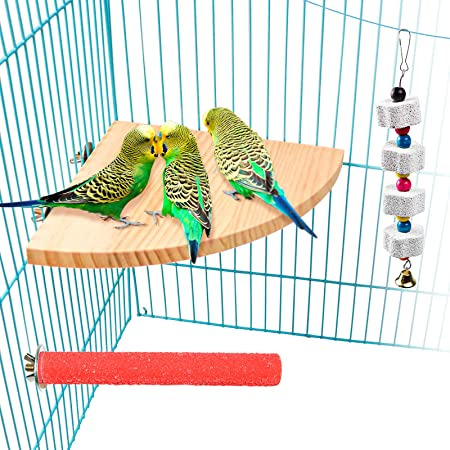 Bird Perch Platform Stand Wood for Small and Medium Animals Parrot Parakeet Conure Cockatiel Budgie Gerbil Rat Mouse Chinchilla Hamster Cage Accessories Exercise Toys Sector