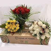 Dreamcutflowers - Premium Roses Subscription Box