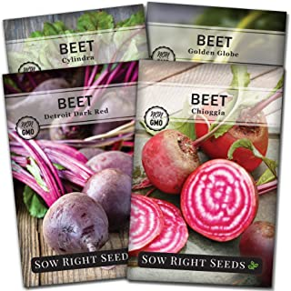 Sow Right Seeds - Beet Seed Collection for Planting - Detroit Dark Red, Golden Globe, Chioggia, and Cylindra Varieties Non...