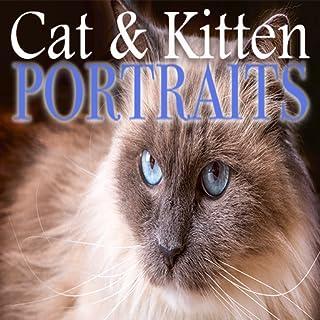 Cat & Kitten Portraits