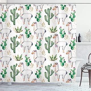 Best llama cactus plant Reviews