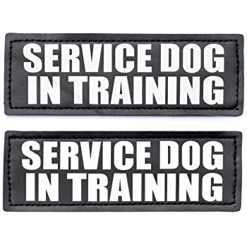 Amazon Com Service Dog In Training Patch With Hook Back And Reflective Lettering For Service Dog In Training Vests Service Dog In Training Large 2 X 6 Home Kitchen