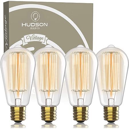 Hudson Vintage Incandescent 60W Edison Light Bulbs - 2100K Dimmable Warm 60W Lightbulbs 230 Lumens - ST64 Clear Glass Bulb Set (4 Pack, White)