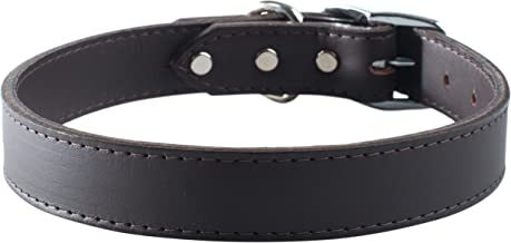 """OmniPet Signature Leather Pet Collar, Sable, 3/4 by 16"""""""