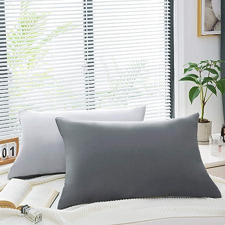 AYSW 18 Couleurs Lot de 2 Taie d'oreiller 30 x 50cm en Microfibre Fermeture Éclair Housse d'oreiller Anti-Acariens Hypoallergénique Zip