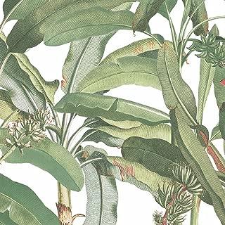 Norwall MH36534 Polynesian Leaves Wallpaper