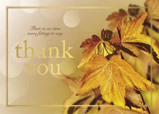 Thanksgiving Foil Printed Greeting Cards - TH1804. Greeting Card with Leaves and a Gold Foil Thanksgiving Message and Border. Box Set Has 25 Greeting Cards and 26 White with Gold Foil Lined Envelopes.