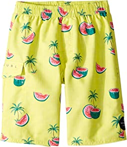Mellons BB Volley Shorts (Big Kids)