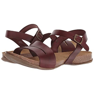 Cordani Manero Sandal (Brown Leather) Women