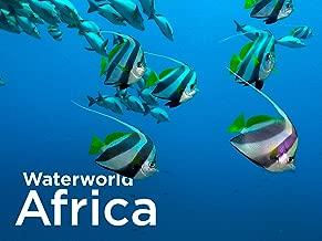 Waterworld Africa - Season 1
